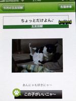 2013_01_23_3947_edited1_3