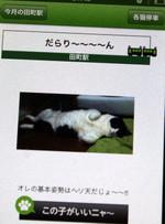 2013_01_23_3948_edited1