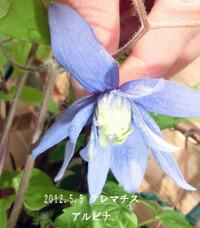 2013_05_05_6600_edited1_2
