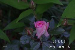2013_05_21_7569_edited1_2