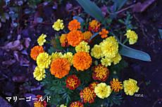 2013_05_21_7570_edited1