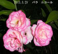 2013_05_29_7847_edited1