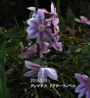 2014_05_19_9559_edited1