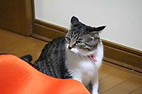 2014_09_08_5544_edited1