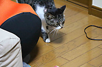 2014_09_08_5546_edited1