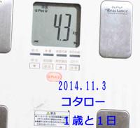2014_11_03_8198_edited1