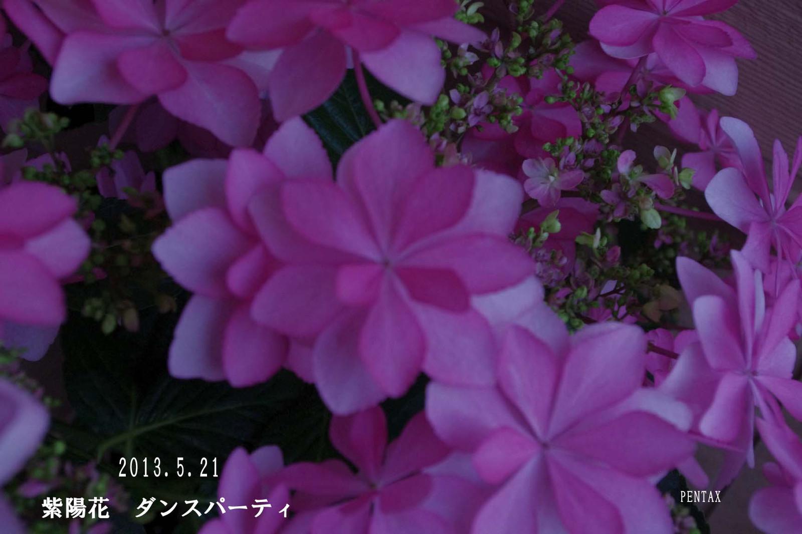 2013_05_21_7563_edited2