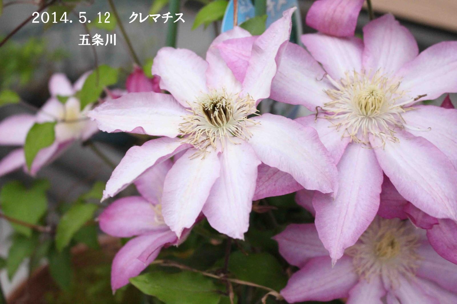 2014_05_13_9257_edited1_2