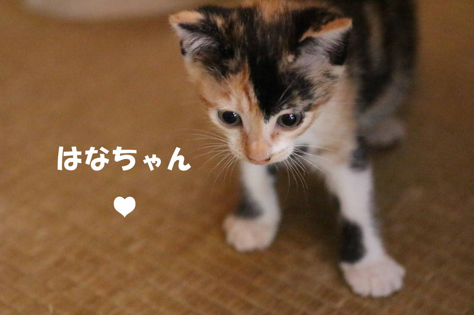 2014_09_23_6257_edited1