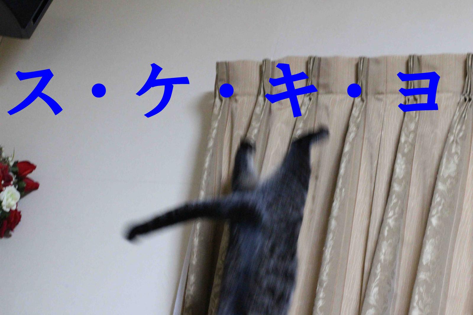2014_11_13_8590_edited1