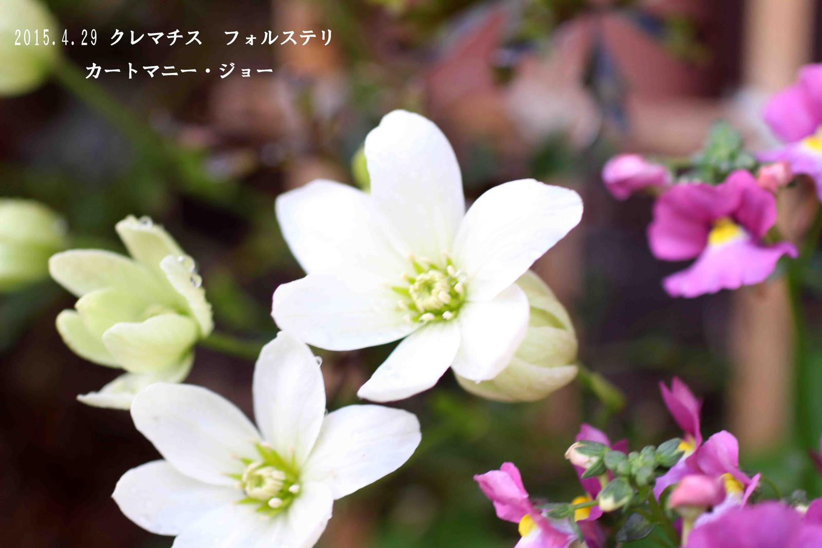 2015_04_29_8698_edited1