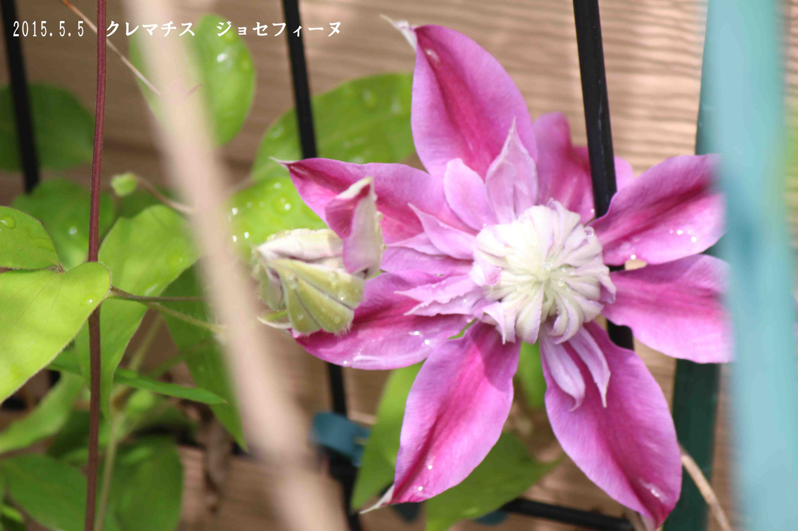 2015_05_05_8873_edited22